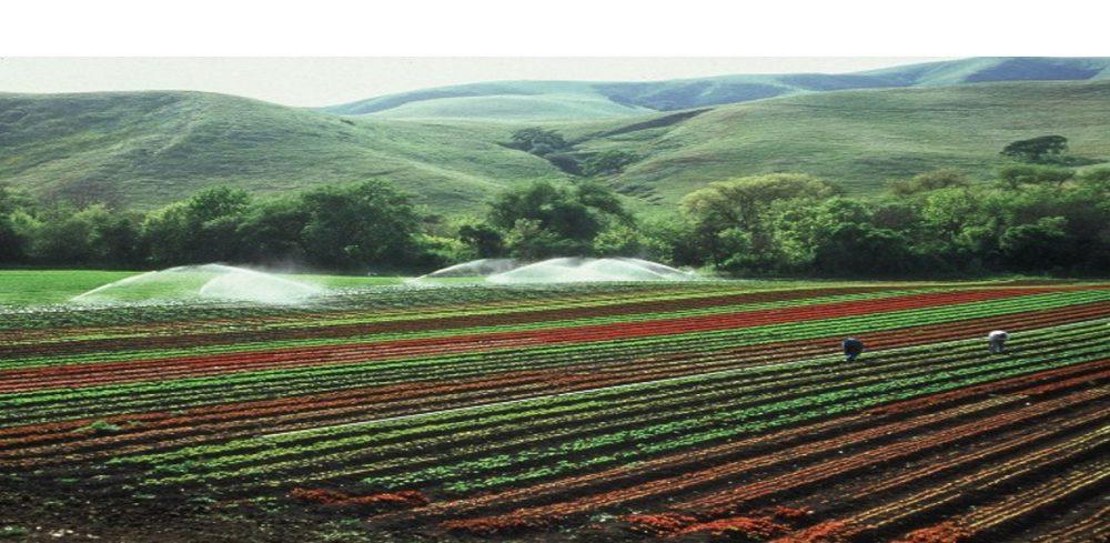 cropped-farmland.jpg
