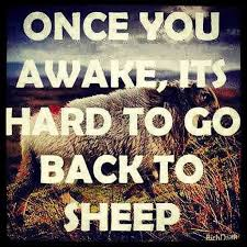 Once you awake, its hard to go back to sheep