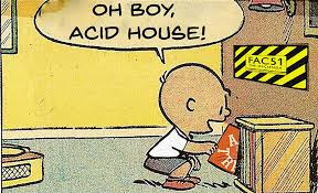 Acid house.jpeg